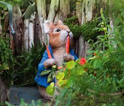 rabbit garden rabbit garden the world of beatrix potter attraction