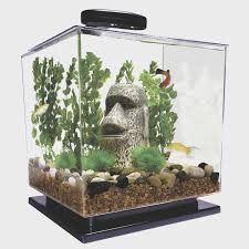 Aquarium Decor Ideas Coffe Table Creative Coffee Table Aquarium India Artistic Color