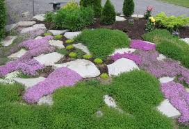 outdoor rock gardens ideas green purpel and rock rock garden