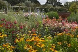 the ornamental gardens lambley nursery