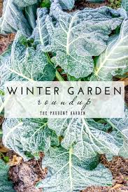 winter garden weather hourly home design inspirations