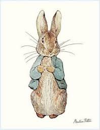 chloe u0027s inspiration peter rabbit themed party celebrate