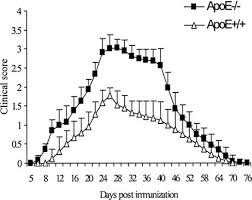 th e chambre b kinetics and polarization of the membrane expression of cytokine