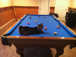 pool table felt repair amazing billiard repair services felt pockets cushions hire a pro