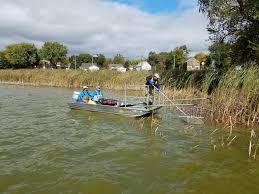 benton lake carp removal carver county mn