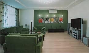 marvelous small modern green living room interior using sofa