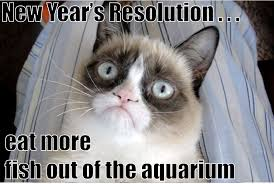 Happy New Year Cat Meme - grumpy cat s new years resolution for more new years cats visit