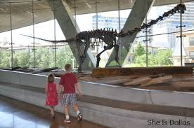 summer time at the perot museum of nature and science dallas