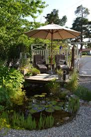 native uk pond plants 89 best create your own pond style images on pinterest ponds a