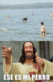 Memes De Jesus - el perro de jes禳s fotos de humor