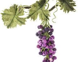 Grapes Home Decor Felt Grapes Etsy