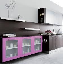 Kitchen Cabinet Designs 2014 Modern Kitchen Cabinets Ideas Design Idea And Decors