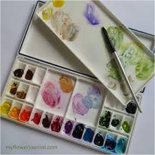 my watercolor paint colors and palette my flower journal