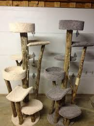 Outdoor Cat Condo Plans by Cat Tree With Natural Wood Cats Pinterest Cat Trees Cat