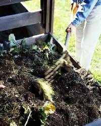 composting for a vegetable garden howstuffworks