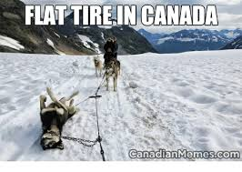 Funny Canadian Memes - 25 best memes about canadian memes sorry canadian memes