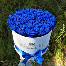 blue roses real luxury roses which last more than 1 year the royal roses