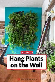 self watering vertical planters indoors or out tips for creating a vertical garden gardens