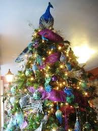 peacock decorated tree rainforest islands ferry