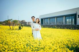 island wedding photographers pre wedding photography at jeju island gayun onethreeonefour