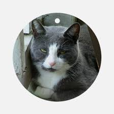 grey and white cat ornament cafepress