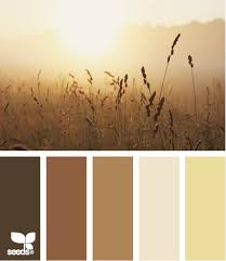 home page paint colors warm browns and wheat fields