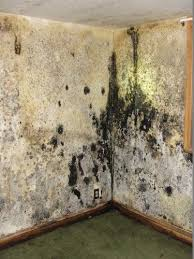 Wet Basement Systems - 15 best fairfield basement waterproofing images on pinterest