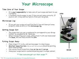 When To Use Parking Lights How To Use A Compound Microscope Basic Microscopy Ppt