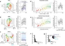 task dependent recurrent dynamics in visual cortex elife