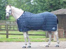 Weatherbeeta Combo Stable Rug Weatherbeeta Channel Quilt 402d Medium Weight Stable Rug The Tack