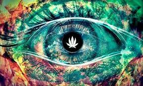here is what happens in the 3rd eye when we smoke cannabis