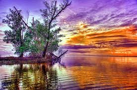 sunset land gorgeous sunset lake trees landscape nature picture hd