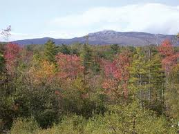 New Hampshire vegetaion images New hampshire history geography state united states jpg