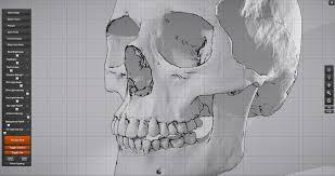 Skull Viewer Skull Sketcher 2 Anatomy 360