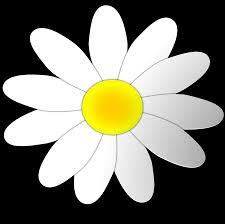 blue daisy flower clipart free clip art images image 8 clipartix