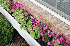What To Plant In Window Flower Boxes - how to make a window box