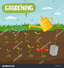 garden colorful designs elements vector farm stock vector