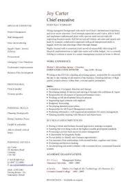 executive resume templates word executive resume template free resume sle