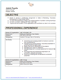 Resume Samples For 2 Years Experience by Over 10000 Cv And Resume Samples With Free Download 2 Years