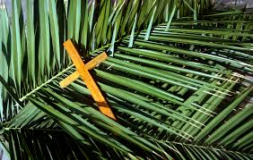 palm for palm sunday how to eat humble pie on palm sunday leannepenny