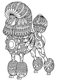creative peacock designs coloring book creative gallery