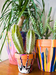 plants winsome colorful ceramic garden pots you might cry over