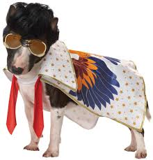 pet costume halloween rock n roll king dog costume costume craze