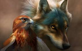 eagle and wolf wallpapers imgur