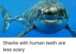 Funny Shark Memes - sharks with human teeth are less scary funny meme on me me