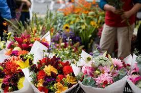 flowers shop flower