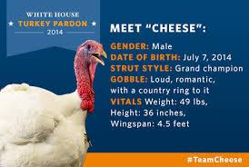 Top Turkeys For Thanksgiving America U0027s Next Top Turkey Vote For The 2014 National Thanksgiving