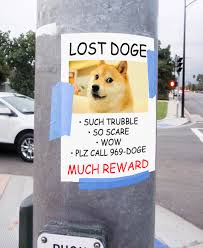 Lost Dog Meme - lost doge doge know your meme