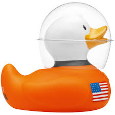 the official bud ducks collection collectable rubber ducks