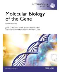 molecular biology of the gene international edition james d